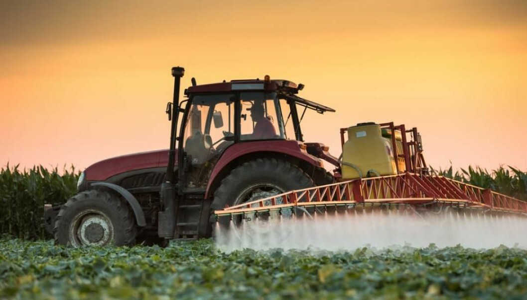 Many pesticides are used in agriculture. To research more environmentally friendly alternatives to the traditional agrochemical pesticides, researchers are looking at fungal spores and spider venom. (Photo: Shutterstock)