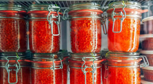 How to make your own luxury caviar