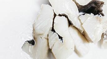 Would you like salt fish or klippfisk for dinner today?