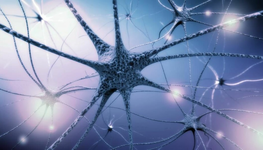 There is debate in the research world about how the nervous system evolved. There are roughly three hypotheses, and you can read about them here in this article.