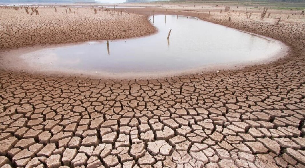 The World Bank predicts that, by 2050, the influence of climate change on water resources may result in a reduction in GDP of up to 10-15 percent in certain dry regions in Asia and Africa.