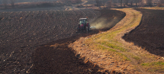 What is soil, anyway?