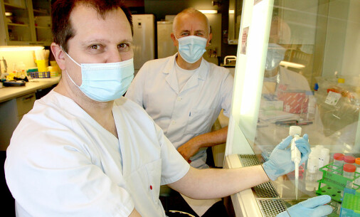 Norwegian researchers may have discovered promising Covid-19 treatments