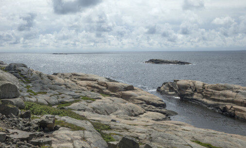 Norway allows widespread and destructive fishing in protected sea areas