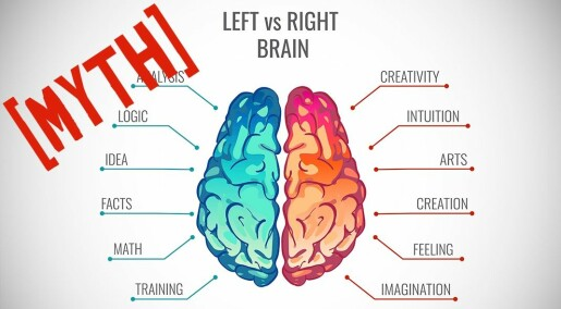 Myth: The left and the right brain hemisphere are fundamentally different