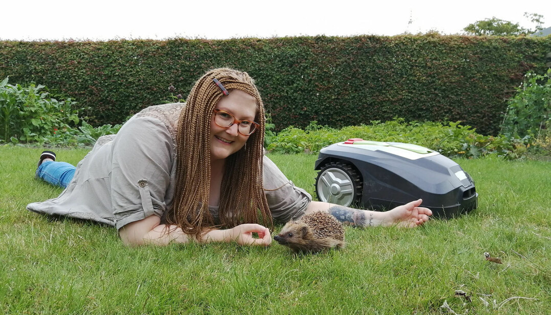 As the population of European hedgehogs is in decline all over Europe, it is very important to identify and investigate the factors responsible for this.