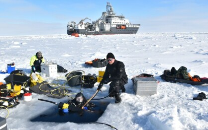 Scientific divers sample ice algae and zooplankton below sea ice