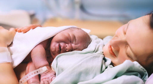 Here come the corona babies? 700 more births in Norway compared to the same period last year