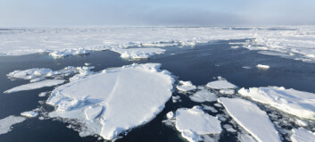 Is the summer in the Barents Sea hot this year?